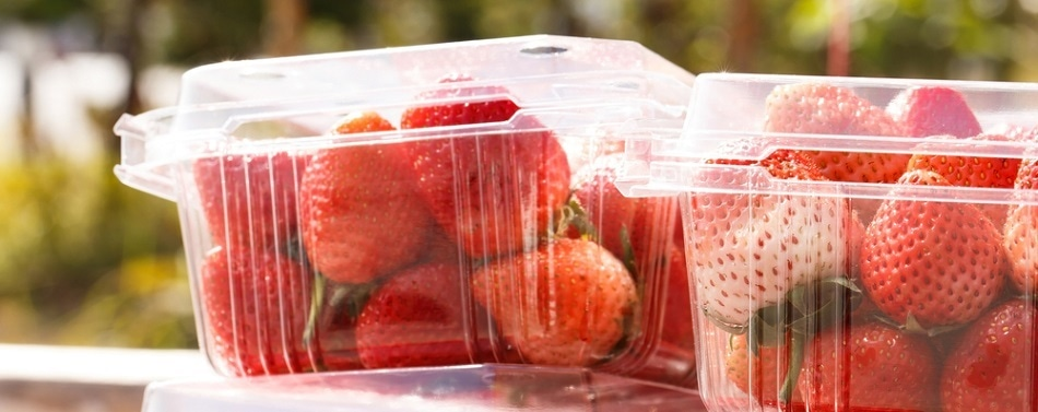 Intelligent Packaging Using Advanced Sensors to Detect Foods Spoilage